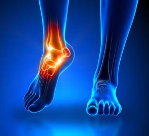 foot-bones